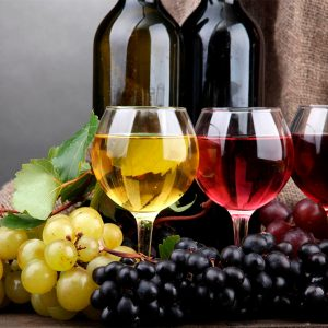 Vinos & Licores Premium